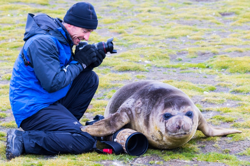 Photographer Chris Bray regarding a weaner seal who has moved on top of some of his gear
